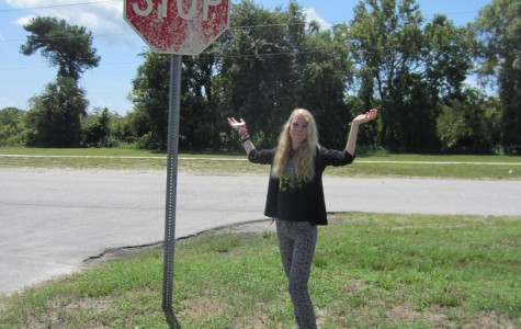 QUESTIONABLE TRAFFIC SIGN CAUSES HOLDUP