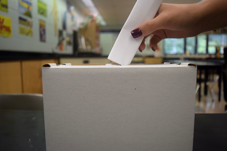 Voting for primaries is important in order to decide whos included in the general election.