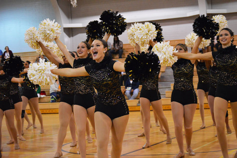 DAZZLERS PERFORM WINTER SHOW