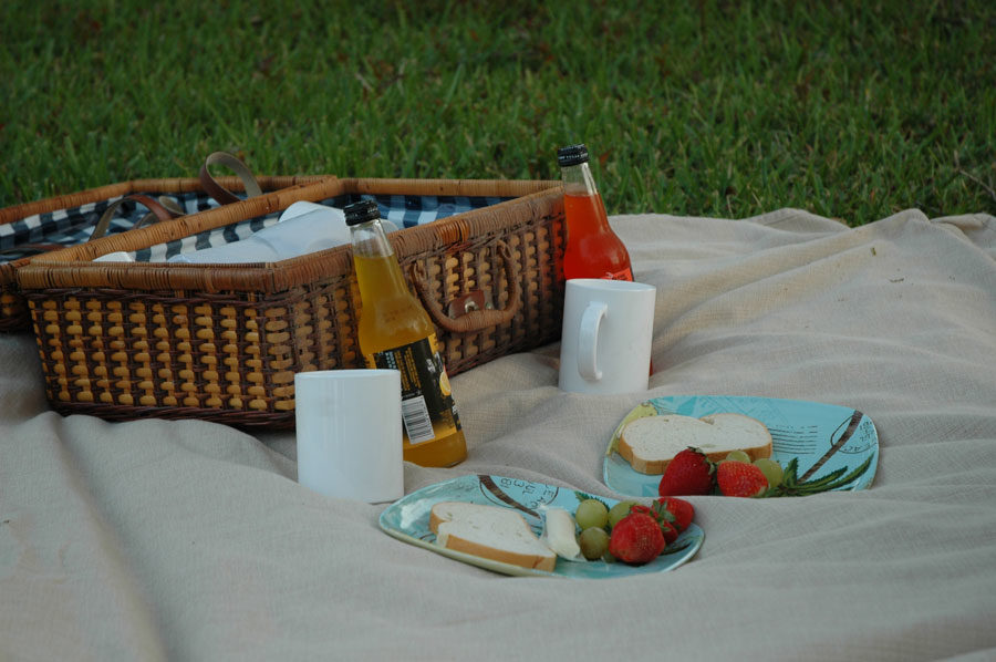 Whether a picnic takes place on a grassy meadow near a river or at the beach, it's the company that makes the difference.