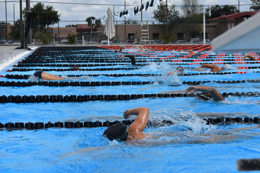 SWIM TEAM TAPERS AND SHAVES TOWARDS VICTORY