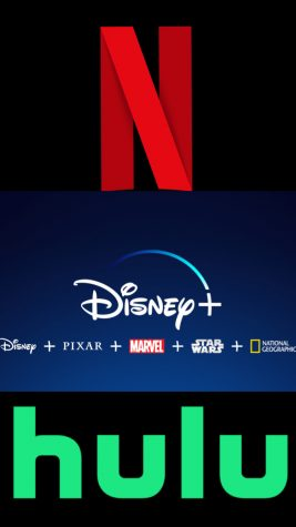 Netflix, Disney plus, and Hulu are each different streaming platforms that appeal to varying audiences.