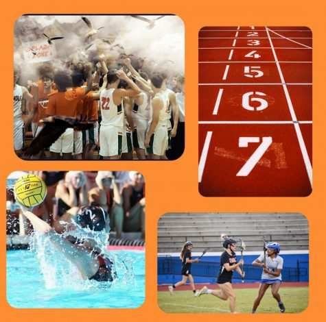 At Seminole High School there are so many sports and activities that are available to our students. If you like to run, swim, dive, or even golf there is a club for you.
